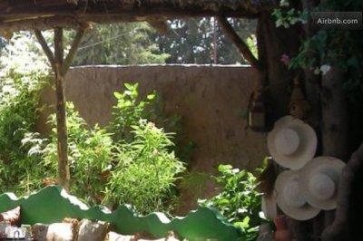 Dar jasmin Marsa Guest House Tunis